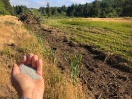 Seeding the LatestCrop